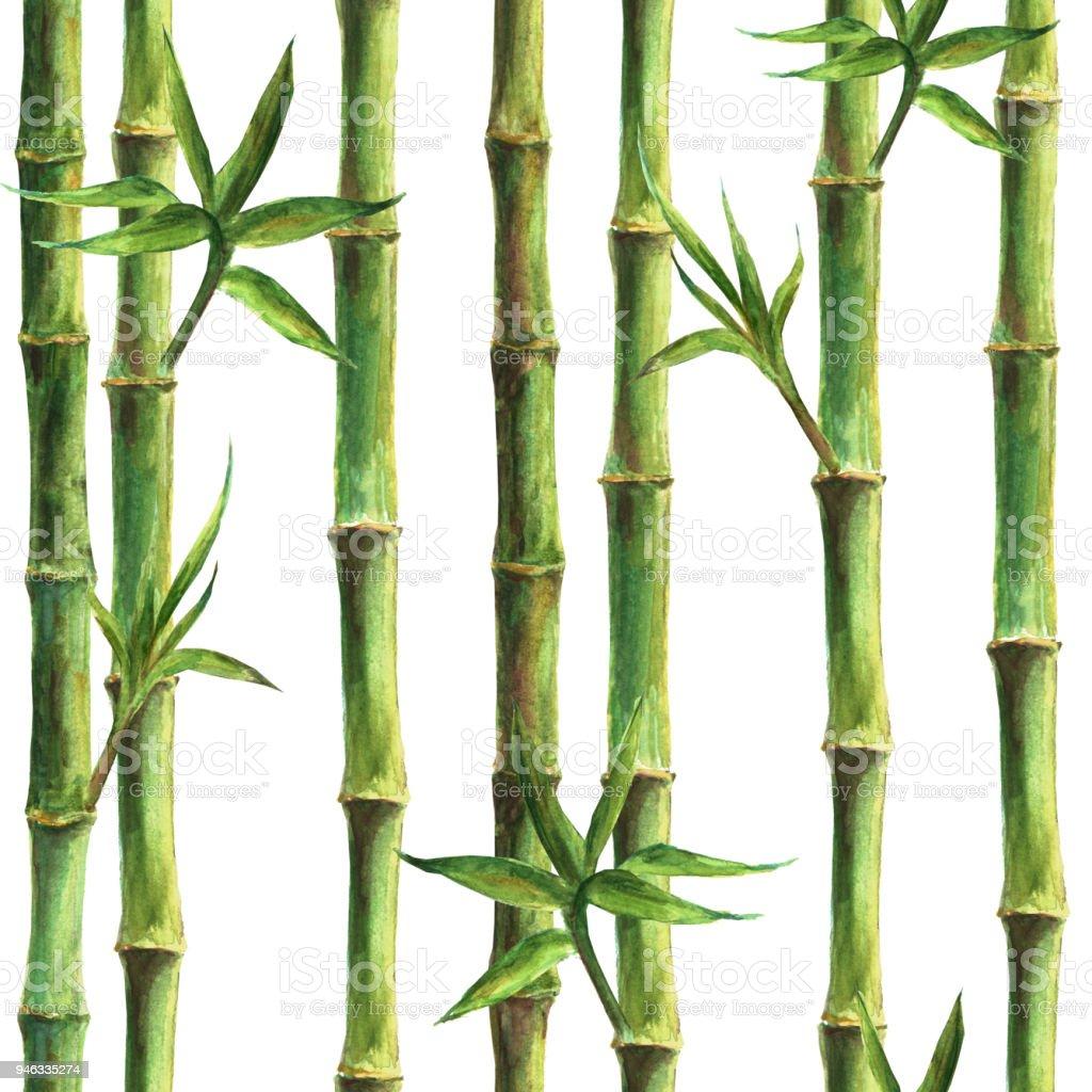 bambou vert tiges et feuilles mod le sans couture cliparts vectoriels et plus d 39 images de. Black Bedroom Furniture Sets. Home Design Ideas