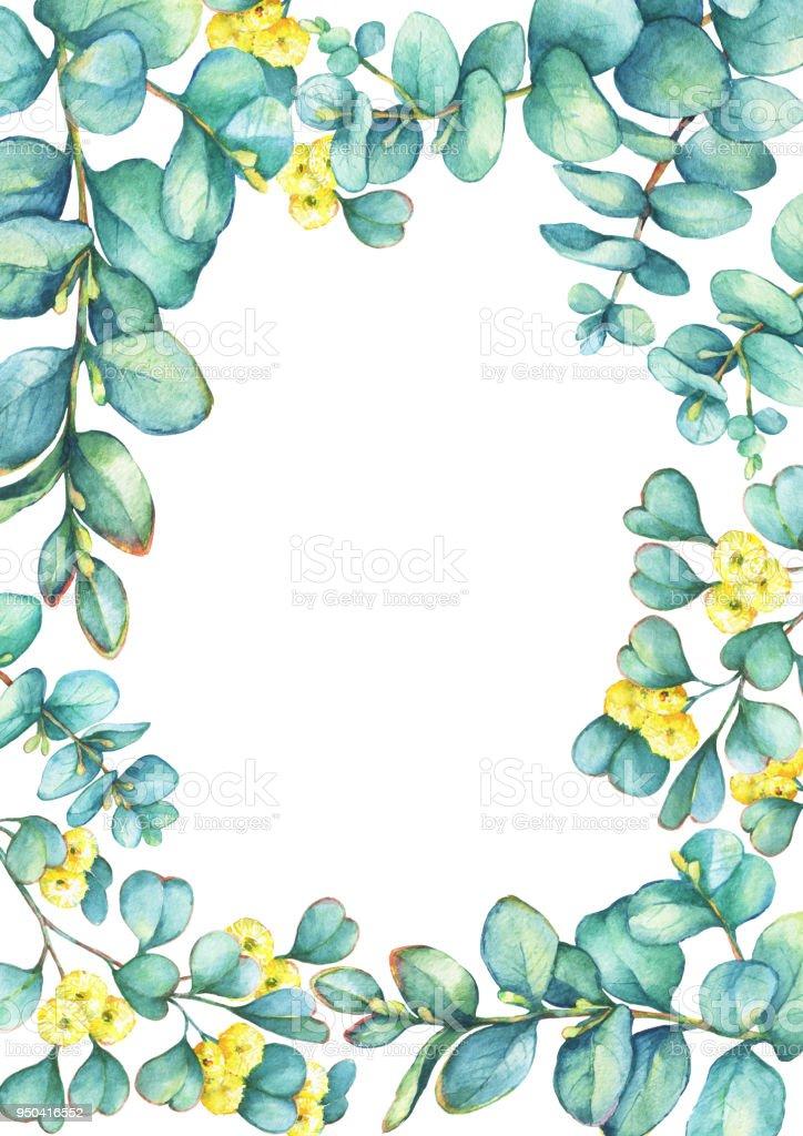 Grüne Blumen Vorlage Mit Einem Zweig Von Silberdollareucalyptus ...