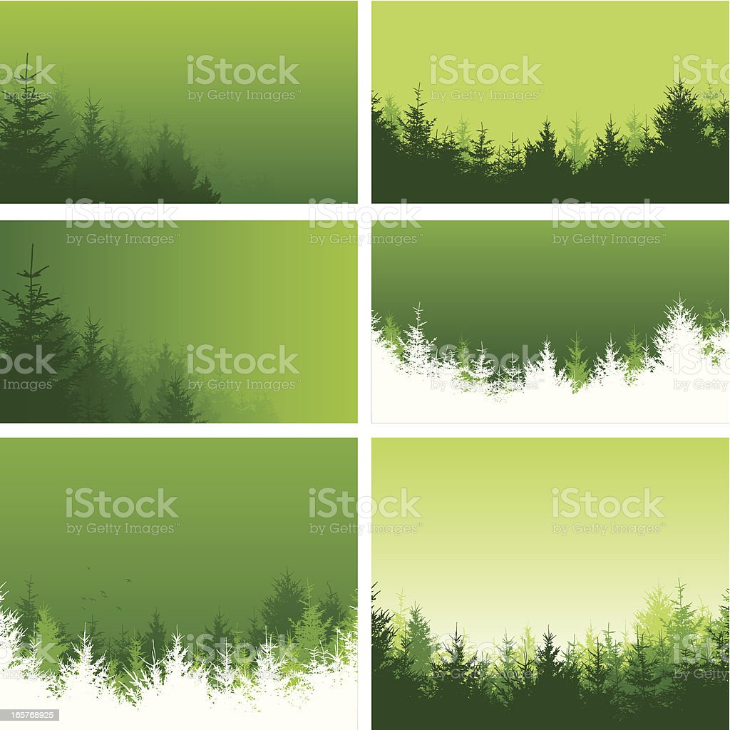 Green forest backgrounds royalty-free green forest backgrounds stock vector art & more images of backgrounds