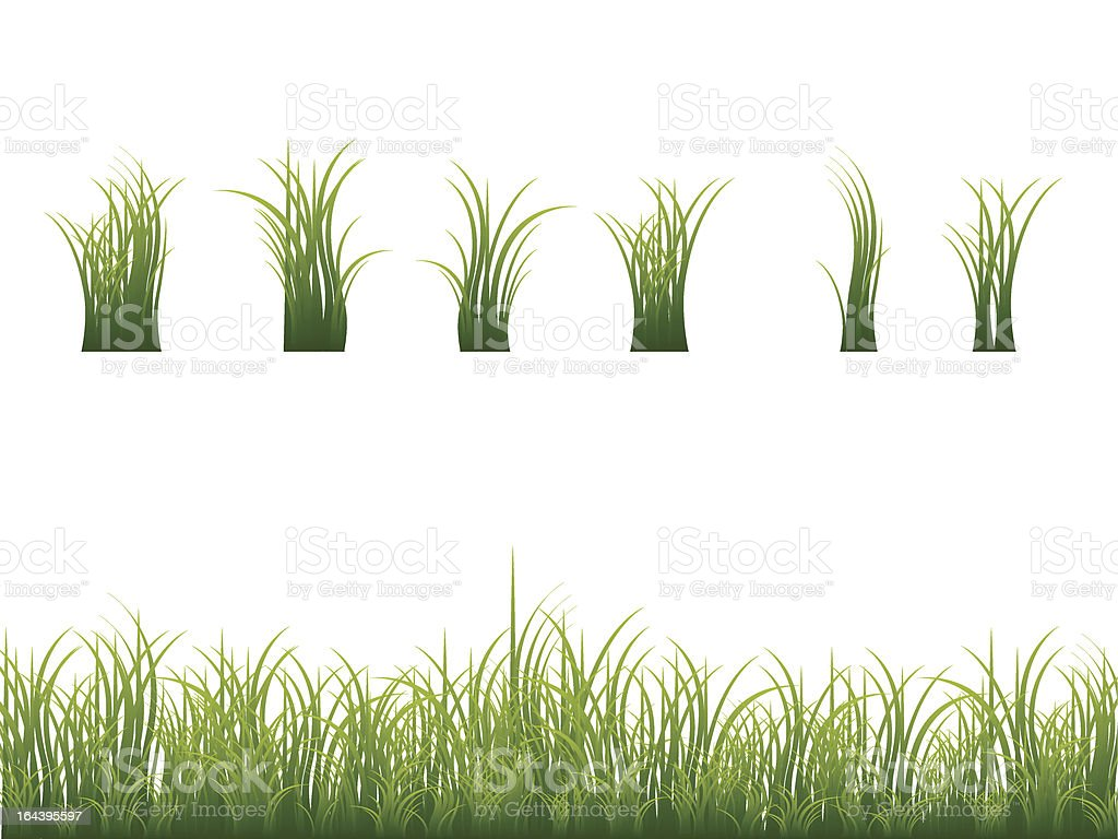 Green grass collection vector art illustration