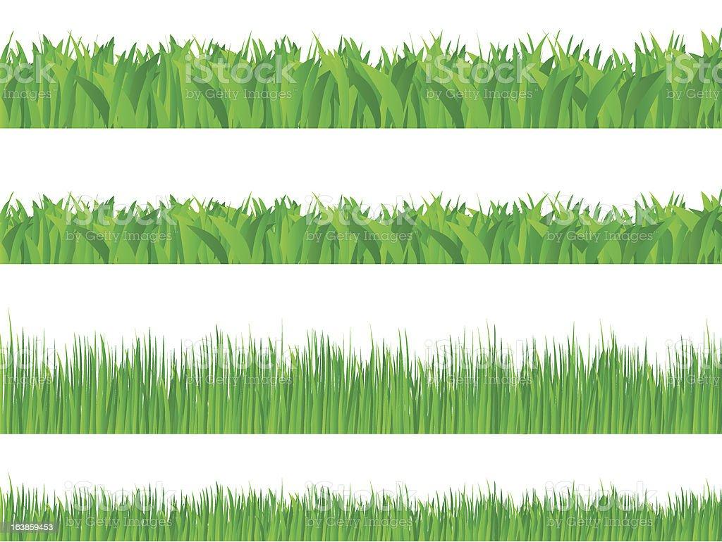 Green grass royalty-free green grass stock vector art & more images of field