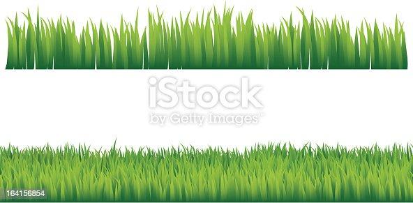 istock Green grass 164156854