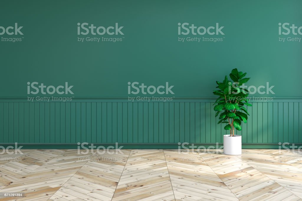 green interior empty room with plant on wood flooring and dark green wall 3d