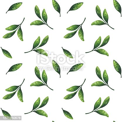istock Green leaf. Seamless pattern with a watercolor illustration on a white background. Eco-friendly plant ornament. Minimalistic, chaotic pattern for a stylish print. 1271350578