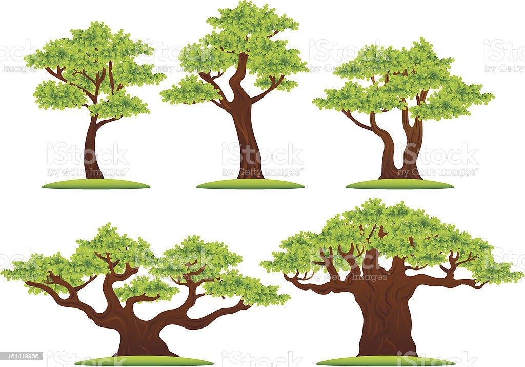 Green oak trees vector illustrations set vector art illustration