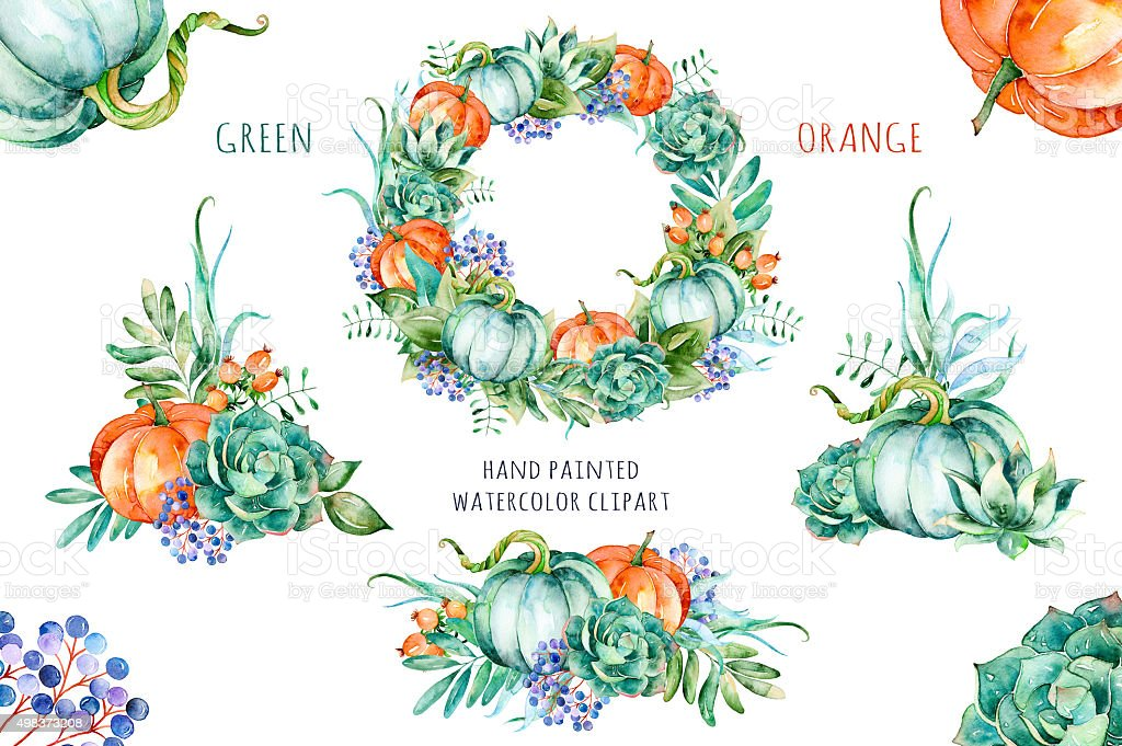 'Green Orange' hight quality watercolor painted collection vector art illustration