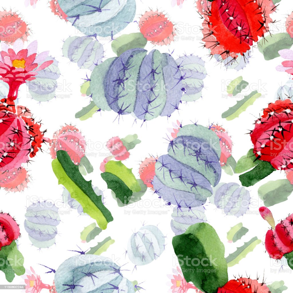 Green Red Cactus Floral Botanical Flower Watercolor Background