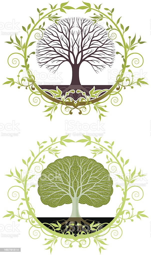 Green tree wreath royalty-free green tree wreath stock vector art & more images of circle