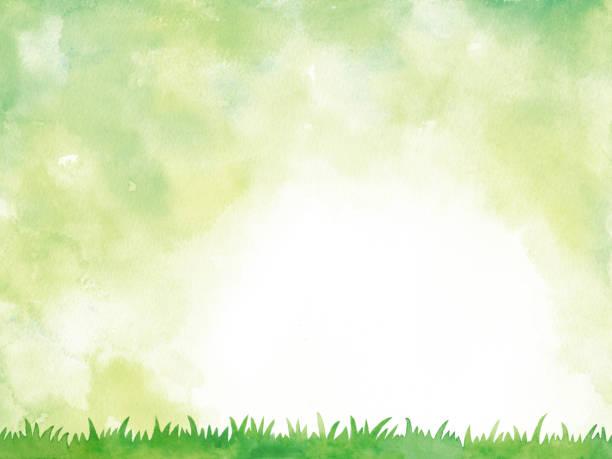 illustrazioni stock, clip art, cartoni animati e icone di tendenza di sfondo acquerello verde - forest bathing