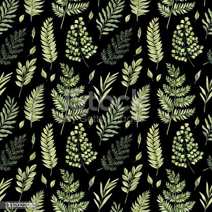 istock Greenery watercolor seamless pattern. Botanical black background with green branches, leaves and fern illustrations. Floral Design. Perfect for invitations, wrapping paper, textile, fabric, packing 1312022032