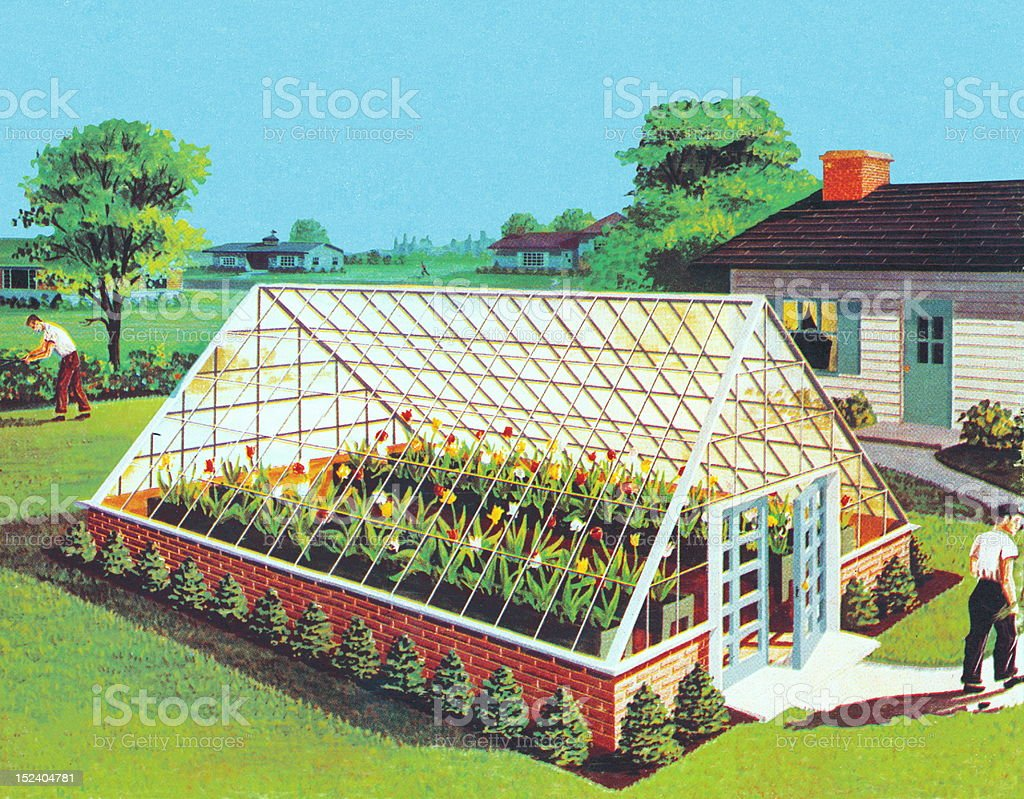 Greenhouse in Backyard royalty-free greenhouse in backyard stock vector art & more images of blue background