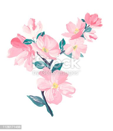 greeting cards, banners and invitation card with blossom sakura flowers. Color pink sakura cherry blossom flower. blossoming branch of pink blossoms.t-shirt design