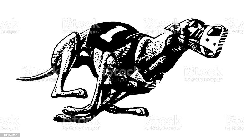 Greyhound Dog Racing vector art illustration