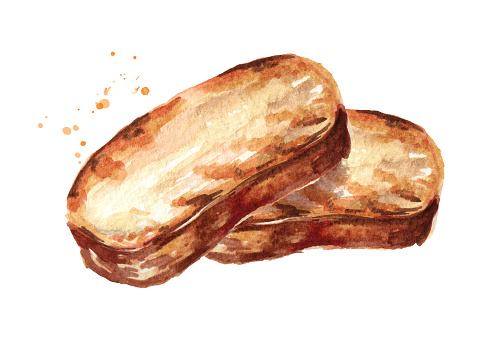 Grilled bread. Toast. Watercolor hand drawn illustration, isolated on white background
