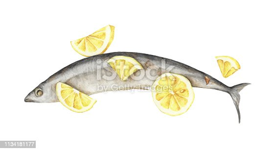 Grilled fish with lemon isolated on white background. Watercolor illustration of food.