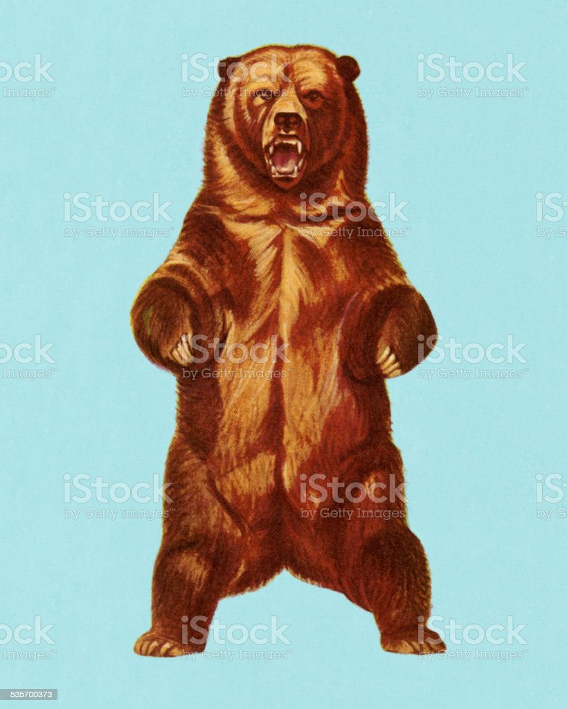 Grizzly Bear Stock Vector Art & More Images of 2015 535700373 | iStock