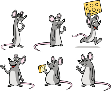Group of Mice