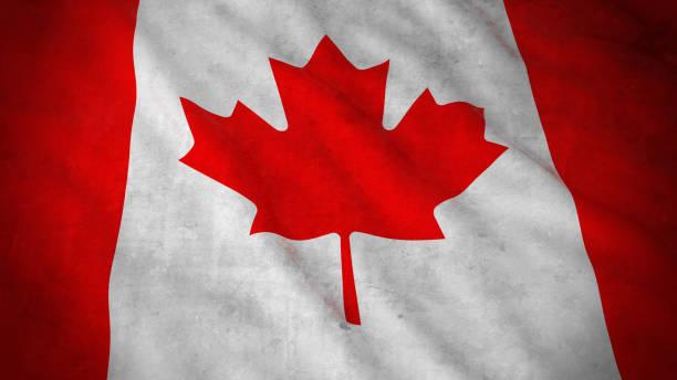 Grunge Flag of Canada - Dirty Canadian Flag 3D Illustration vector art illustration
