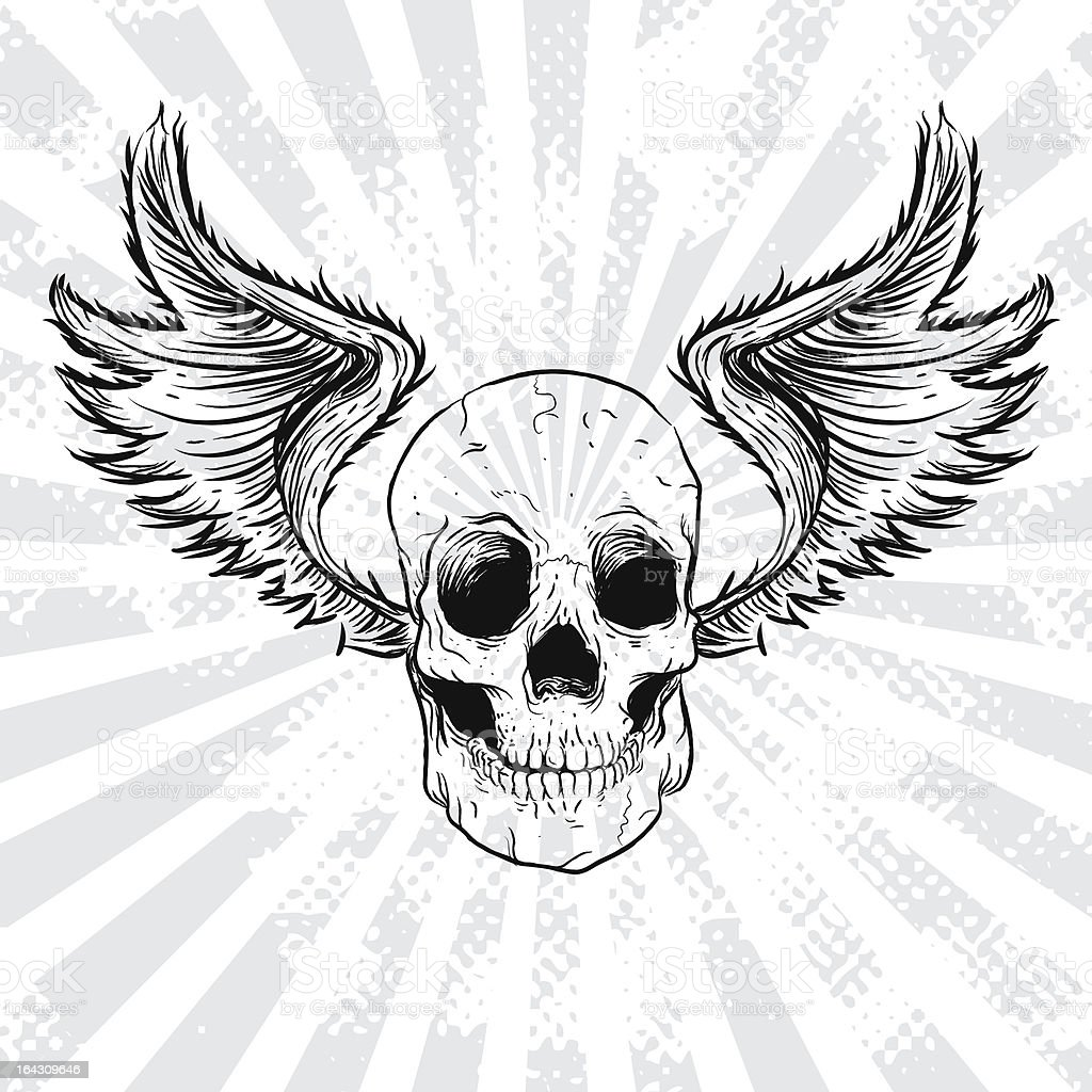 Grunge Skull With Wings royalty-free grunge skull with wings stock vector art & more images of animal