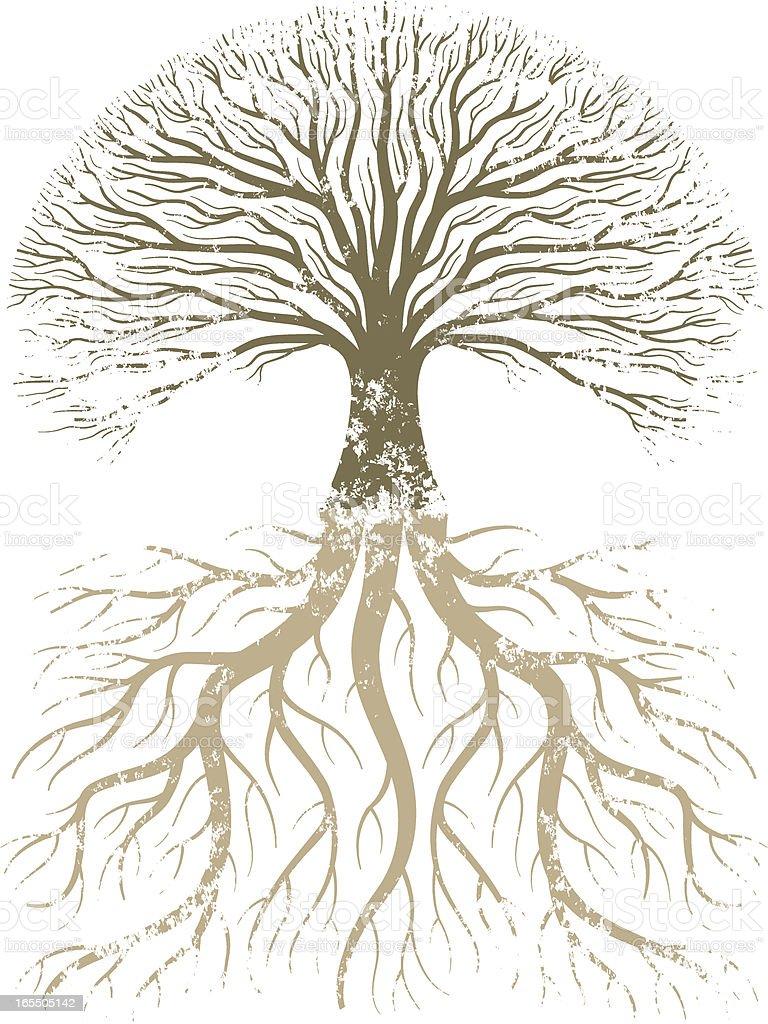 Grunge árbol y raíces. - ilustración de arte vectorial