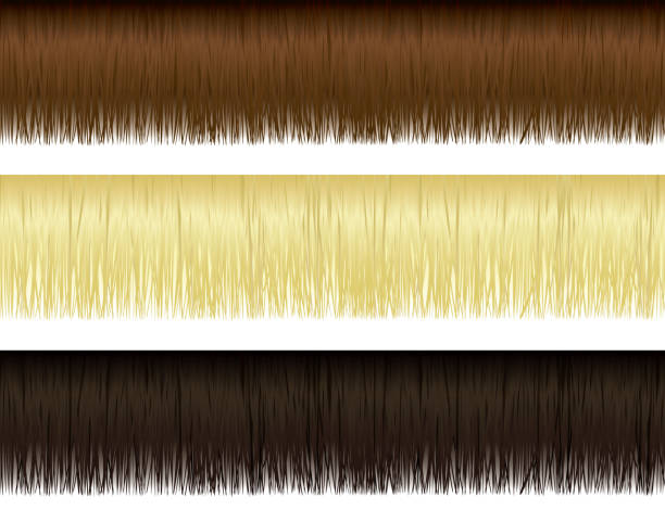 Hair Borders Very detailed vector hair elements. Only uses 3 simple linear gradients. bangs stock illustrations