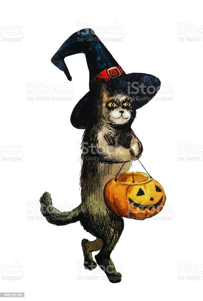 Halloween Cat With Pumkin And Witch Hat Hand Drawn Watercolor Illustration Isolated On White