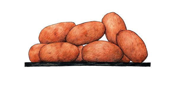 Hand drawn ham croquettes tapa. Typical Spanish tapa.