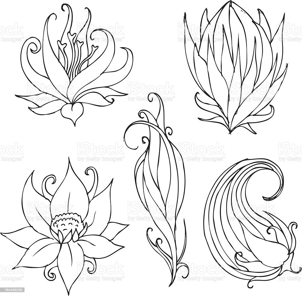 hand drawn lotus designs royalty free hand drawn lotus designs stock vector art
