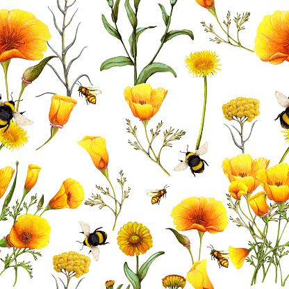 Hand drawn seamless pattern of summer wildflowers,Floral pattern