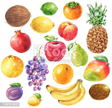 Hand drawn watercolor fruits set, isolated on white background. Food art clip-art.