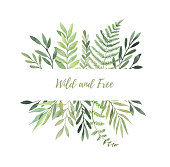 Hand drawn watercolor illustration. Botanical label with green leaves, branches and herbs. Floral Design elements. Perfect for wedding invitations, greeting cards, prints, posters, packing etc