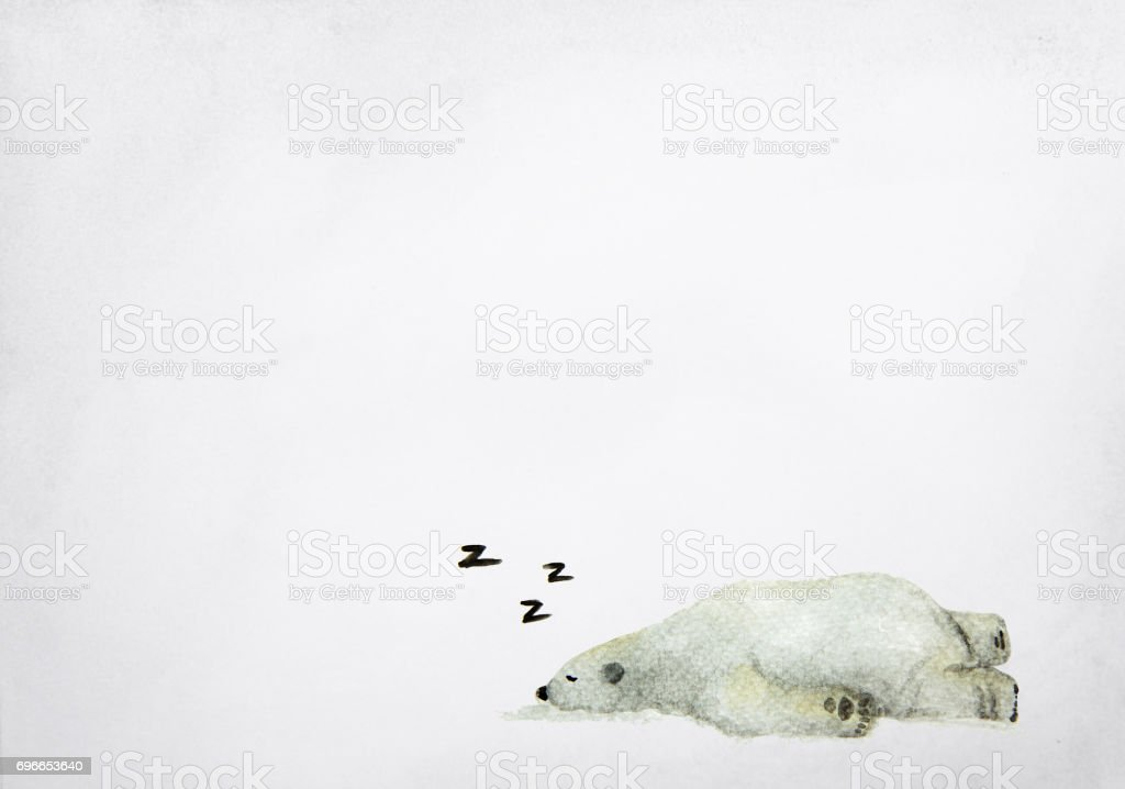 Hand drawn watercolor painting of sleeping polar bear on grey background. vector art illustration