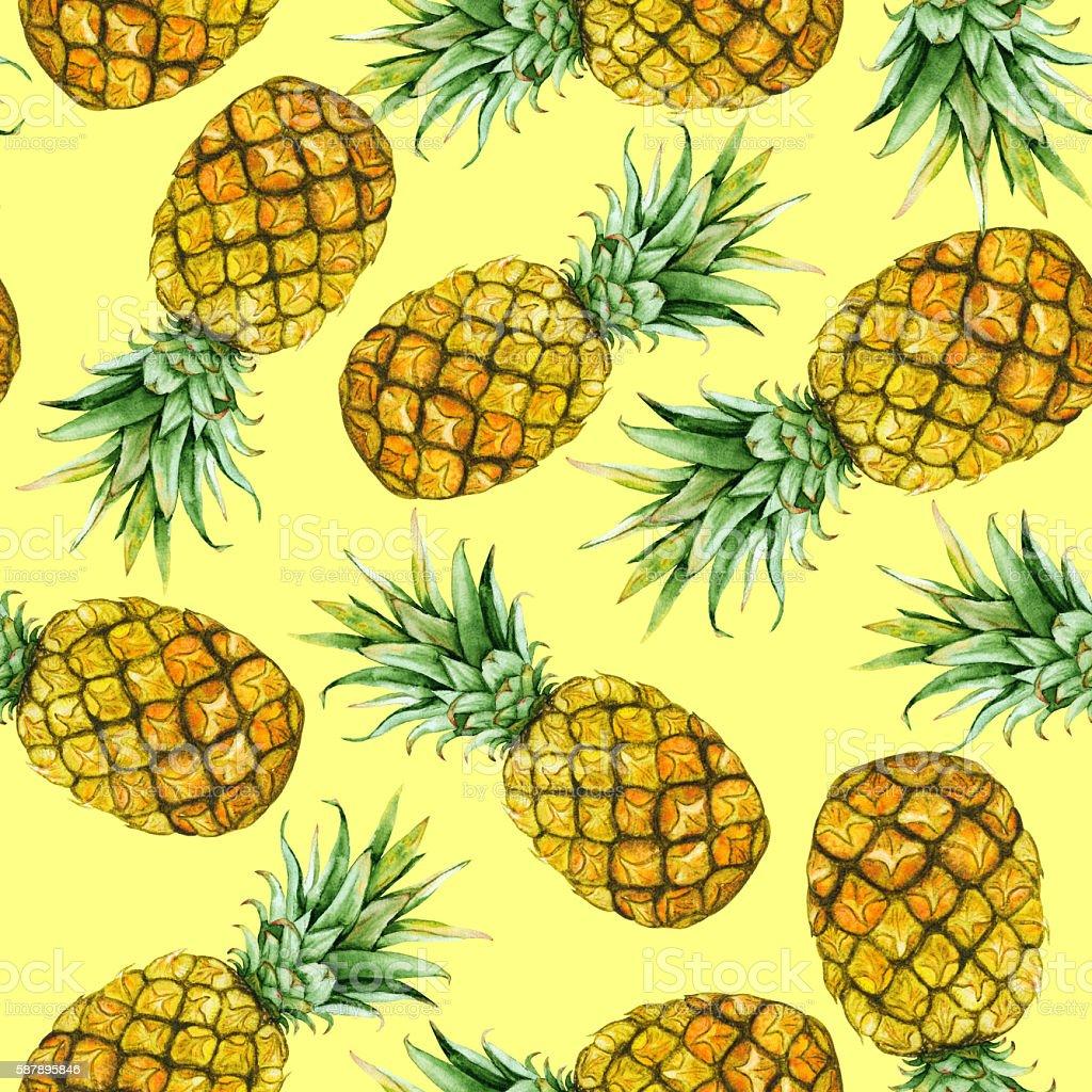 hand drawn watercolor pineapples vector art illustration