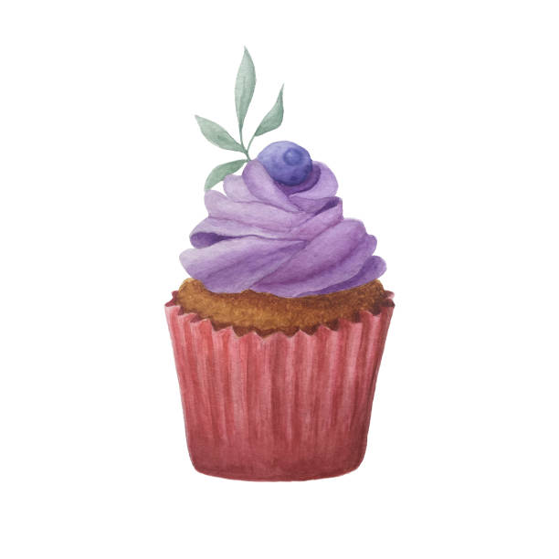 hand drawn watercolor purple and pink cupcake vector art illustration