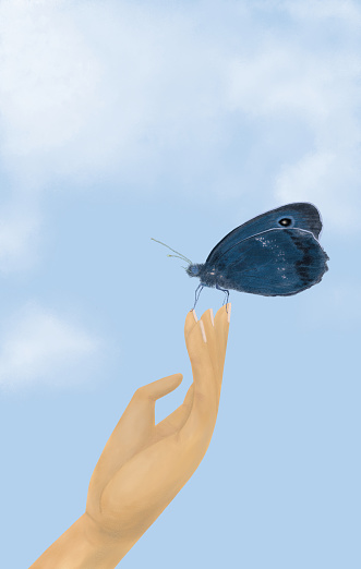 Hand holding a blue butterfly