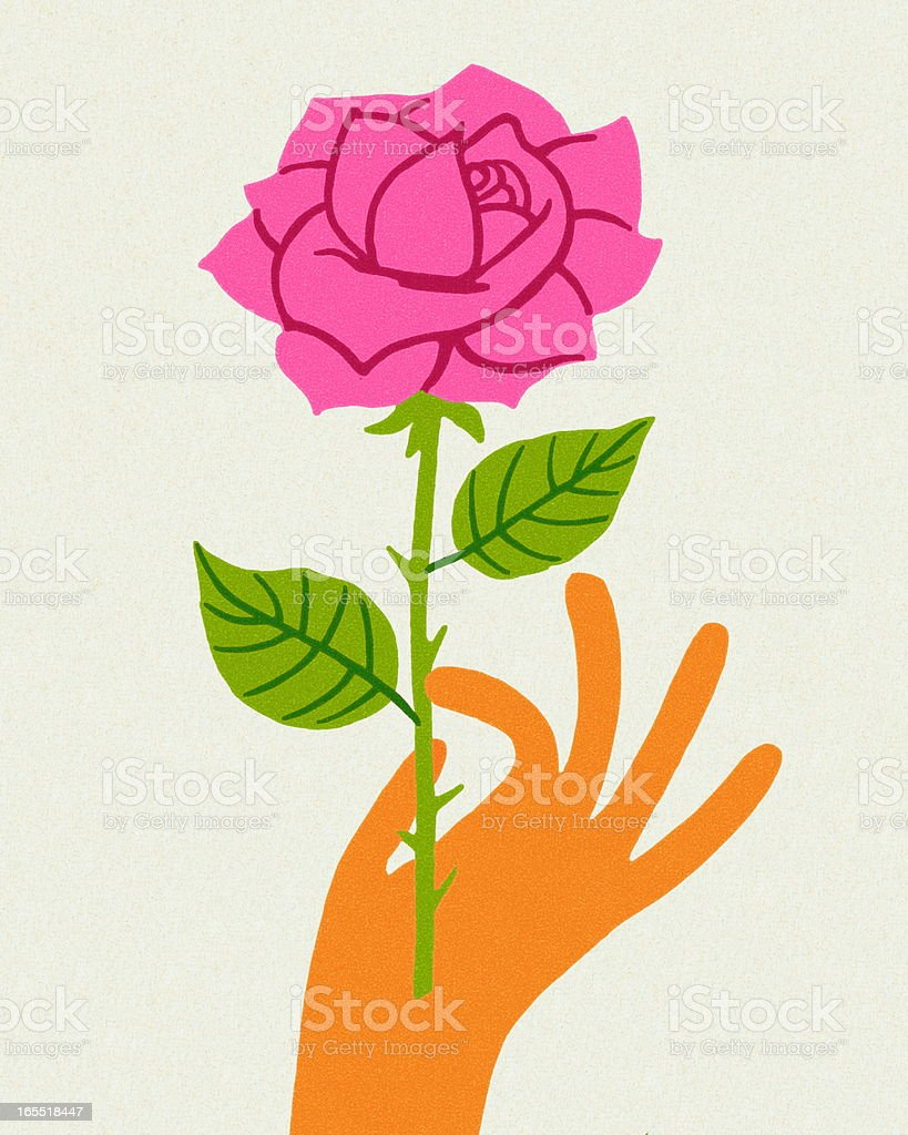 Hand Holding a Pink Rose royalty-free stock vector art