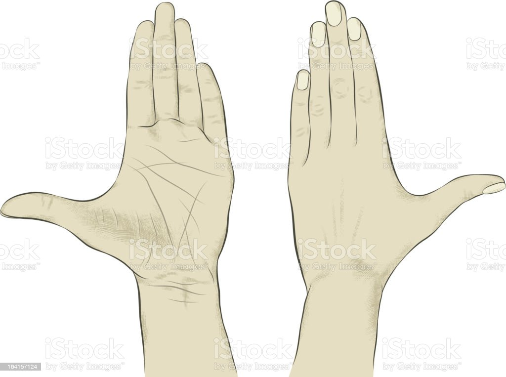 Hand – Vektorgrafik