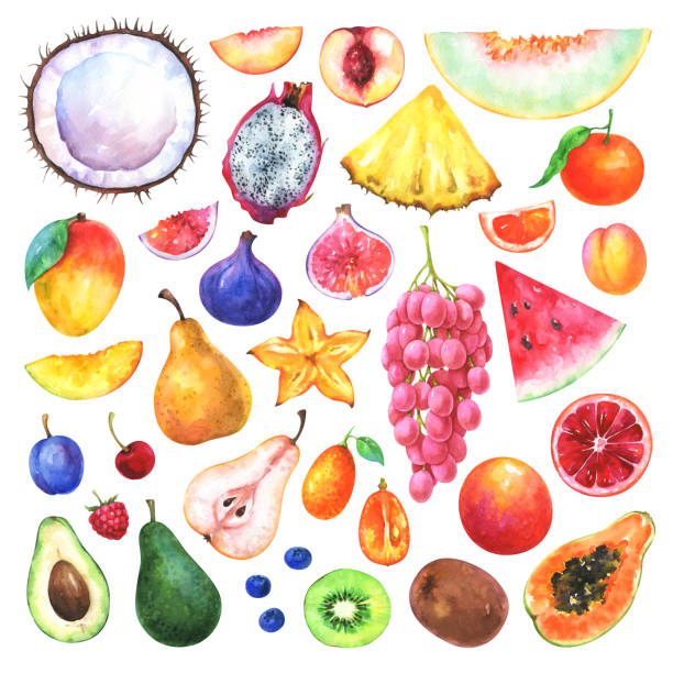 hand painted fruits set - vegetable blood stock illustrations, clip art, cartoons, & icons