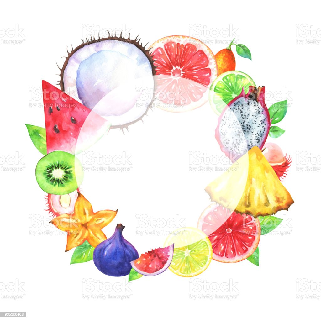 Hand painted round fruit frame vector art illustration