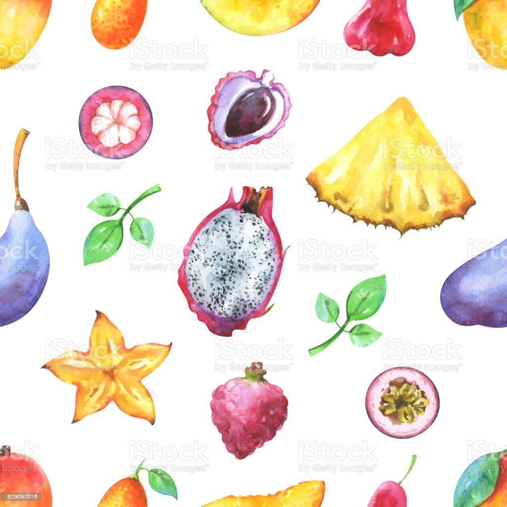 Hand painted seamless exotic pattern with watercolor mango, pineapple, carambola, pitaya, lychee, passiflora edulis, kumquat, mangosteen, akebia quinata isolated on white background vector art illustration