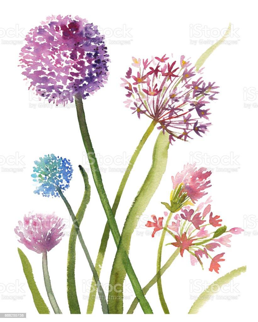 tsveti-buket-iz-alliuma-floristicheskoy-gubke-svoimi