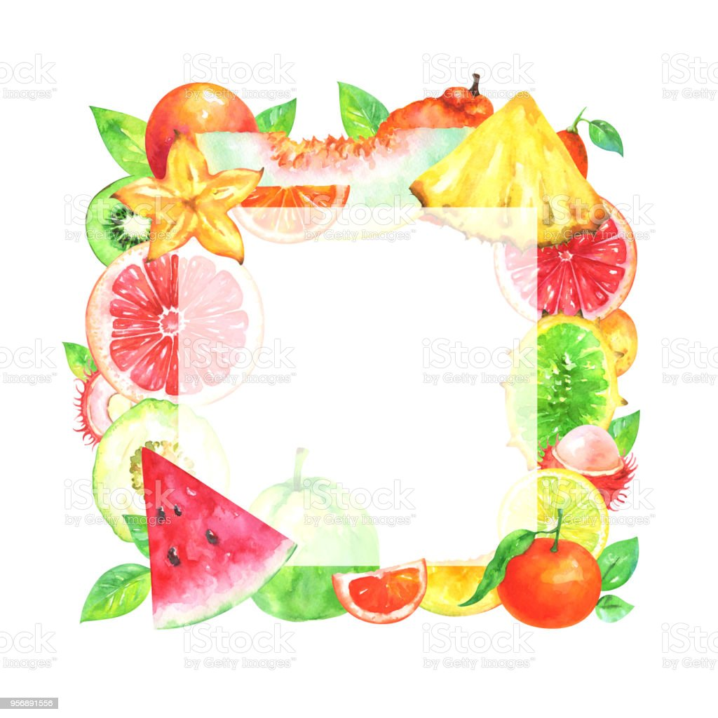 Hand painted square fruit frame vector art illustration