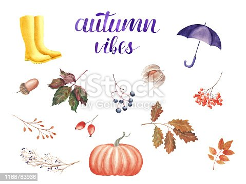 Hand painted Watercolor Illustration. Set with rubber boots, umbrella, pumpkin, leaves and berries isolated. Autumn mood concept. Elements for design greeting card, wedding invitation, banner