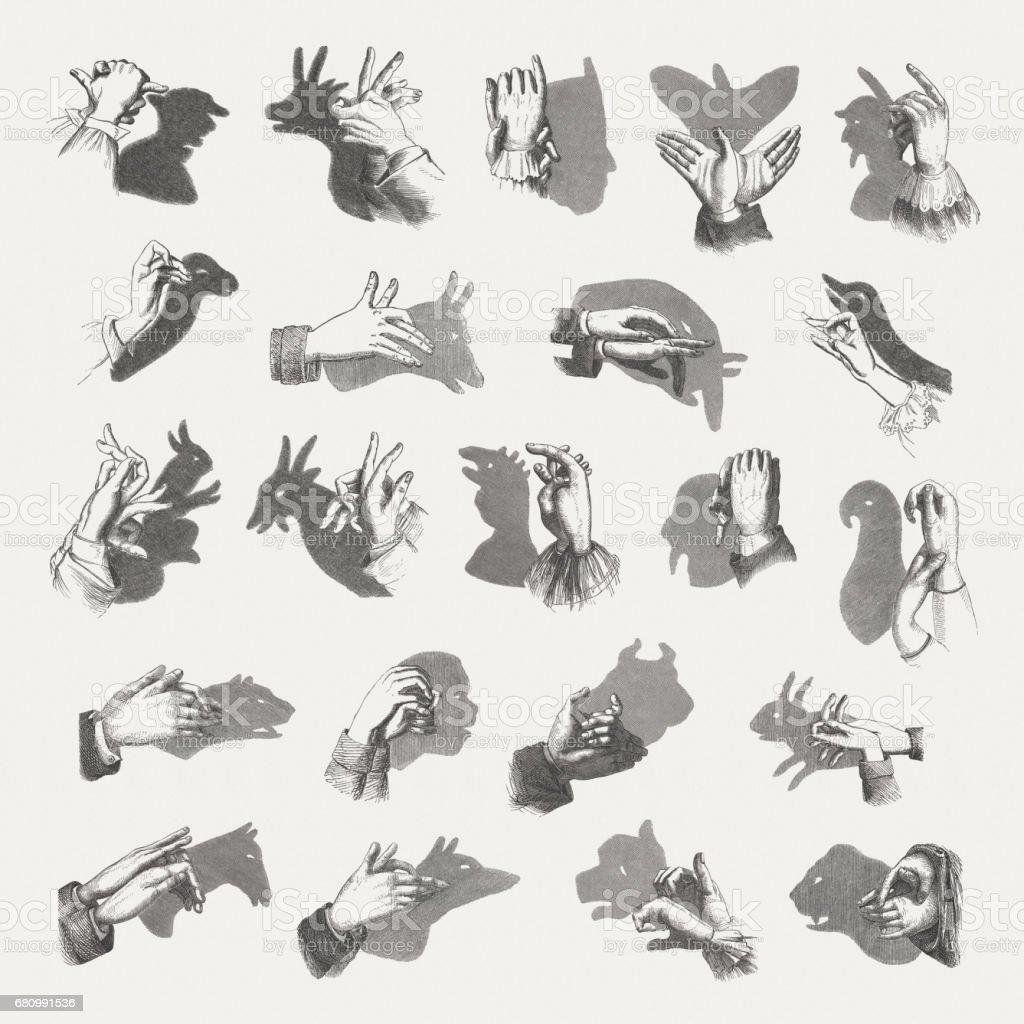 手影絵人形木材彫刻1884 年に公開 - アナウサギのベクターアート素材や ...
