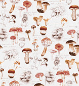 Hand-drawn watercolor seamless pattern of the different mushrooms. Repeated natural background with mushrooms