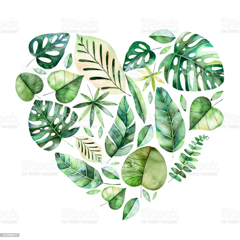 Handpainted Illustration With Colorful Tropical Leaves Stock Illustration Download Image Now Istock Colorful watercolor frame border with colorful tropical leaves. handpainted illustration with colorful tropical leaves stock illustration download image now istock