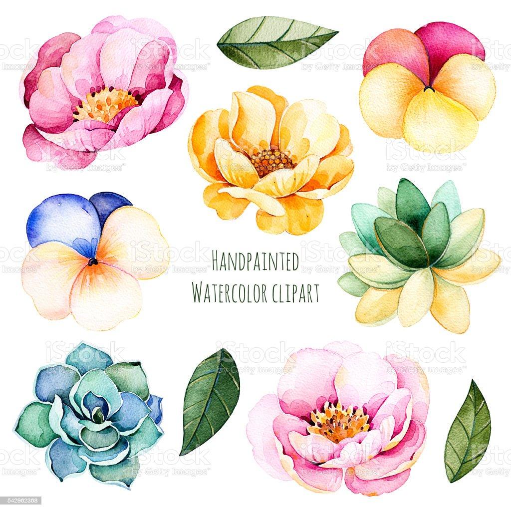 Handpainted Watercolor Flowers And Leaves10 Watercolor ...