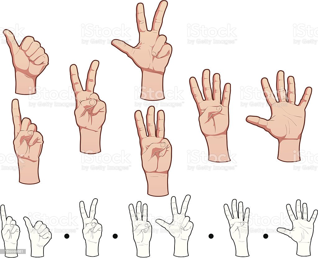 Hands And Numbers Stock Vector Art & More Images of Anatomy ...
