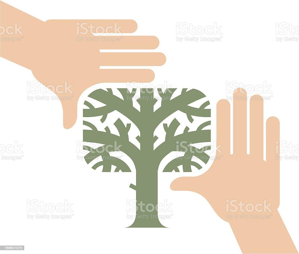 Hands framing tree royalty-free stock vector art