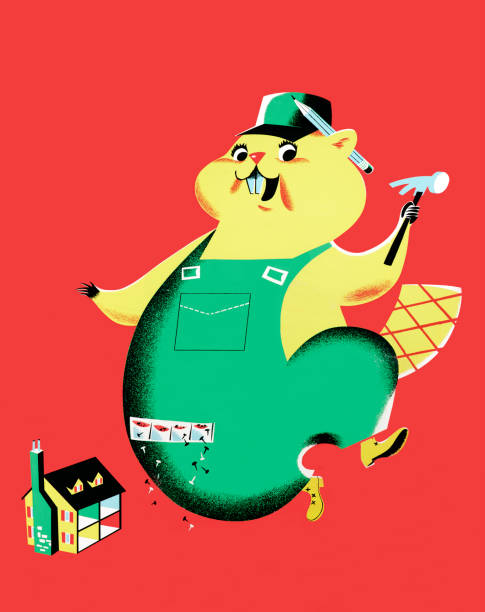 Handyman Beaver http://csaimages.com/images/istockprofile/csa_vector_dsp.jpg dollhouse stock illustrations
